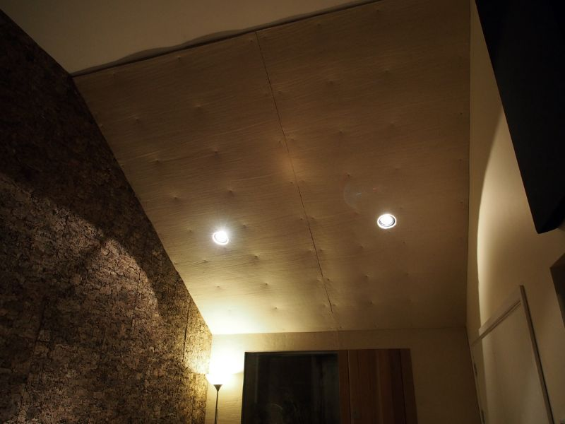 live-room-ceiling